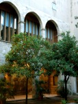 There were actual orange trees in the museum courtyard.